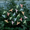 Hummingbirds Solar String Lights