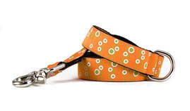 Townsend Orange Leash