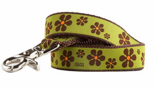 Valencia Brown Leash