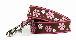 Valencia Pink/Brown Leash