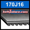 170J16 Poly-V Belt, Metric 16-PJ432 Motor Belt.