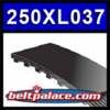 """250XL037 TIMING BELT. 3/8"""" Wide, 125 Teeth, 25"""" Pitch Length (0.200"""" Pitch)."""