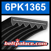 6PK1365 Automotive Serpentine (Micro-V) Belt: 1365mm x 6 ribs. 1365mm Effective Length.