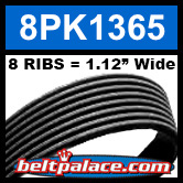 8PK1365 Automotive Serpentine (Micro-V) Belt: 1365mm x 8 RIBS. 1365mm Effective Length.