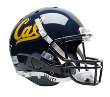 California Golden Bears Schutt XP Full Size Replica Helmet
