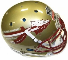 Florida State Seminoles 2013 National Champions 14-0 Schutt Authentic XP Helmet