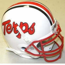 Maryland Terrapins 'Terps' Schutt Authentic Mini Helmet