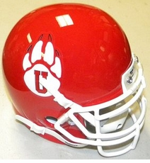 South Dakota Coyotes Schutt Authentic Mini Helmet