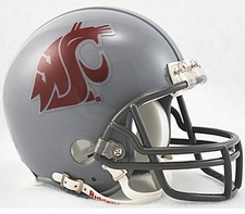 Washington State Cougars 2011 Dark Grey Riddell Replica Mini Helmet