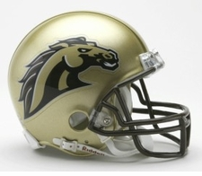 Western Michigan Broncos Riddell Replica Mini Helmet