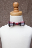 Stinky McGee Holiday Plaid Bow Tie