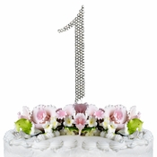 Completely Covered ~ Swarovski Crystal Wedding Cake Topper ~ Number 1