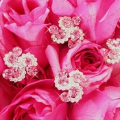 Pink Bouquet Accenting Jewelry