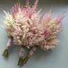 Shop more<br>ASTILBE