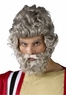 Adult Moses Wig and Beard Set