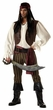 Adult Rogue Pirate Costume