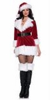 Adult Secret Santa Sexy Christmas Costume