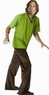 Adult Shaggy Costume - Scooby Doo