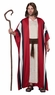 Adult Shepherd or Moses Costume