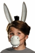 Adult Shrek Donkey Ears and Nose Costume Kit