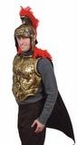 Antiqued Gold Roman Body Armor With Cape