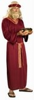 Deluxe Long Moses Wig and Beard - Candy Apple Costumes ...