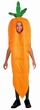 Child's Carrot Costume