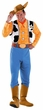 Deluxe Adult Toy Story Woody Costume, Size XL