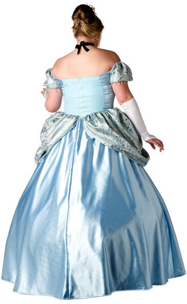 Plus Size Cinderella Costume & Plus Size Enchanting Princess Costume ...