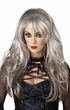 Fallen Angel Long Gray Wig