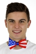 Patriotic Stars and Stripes Bow Tie