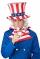 Uncle Sam White Wig and Goatee