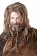 Viking Wig, Beard and Mustache