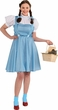 Women's Plus Size Dorothy Costume