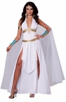 Women's Sexy Gorgeous Goddess Costume