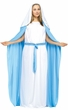 Women's Plus Size Virgin Mary Costume