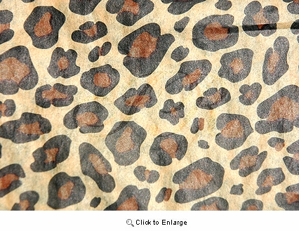 "20""x30"" Leopard Safari Gift Tissue Paper Pack of 5 sheets"