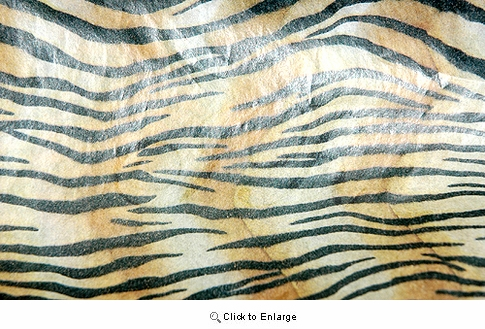 """20""""x30"""" Tiger Safari Gift Tissue Paper Pack of 5 sheets"""