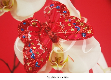 "4"" Red Glitter Feather Butterflies Pack of 12 Pcs"