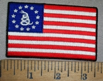 4394 CP - Don't Tread On Me Snake With American Flag -