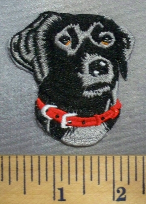 5089 C - Black Labrador - Embroidery Patch