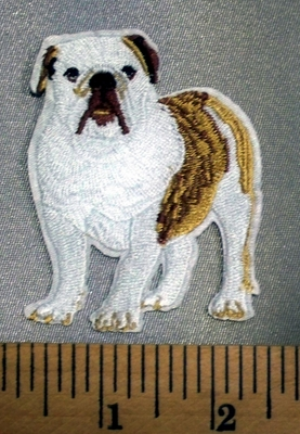 5098 C - Bulldog - Embroidery Patch