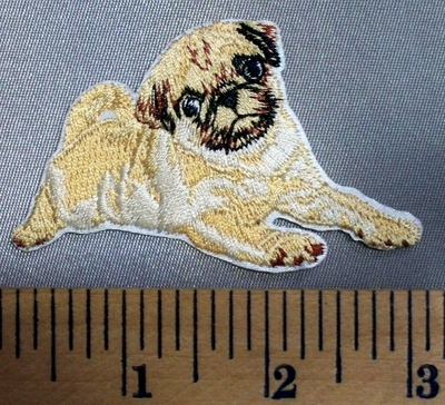 5100 C - Pug - Embroidery Patch