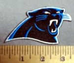 1929  C - Carolina Panthers -  Embroidery Patch