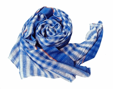 Classic Blue Checkered Plaid Scarf