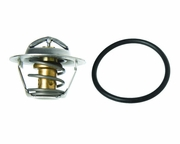 18-3615 Thermostat - Raw Water