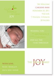 Glad Tidings Birth Announcement