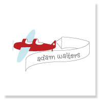 Plain Airplane/Set of 25