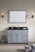 "Ariel Hamlet 49"" Single Sink Vanity Set with Absolute Black Granite Countertop in Grey"