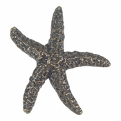Atlas Homewares - 142-BB - Starfish Knob - Burnished Bronze